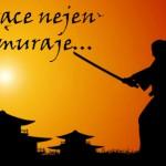 Nejen pro samuraje