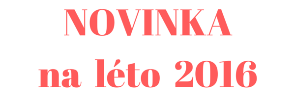 NOVINKA_léto 2016_business success_workshop_průhlednost