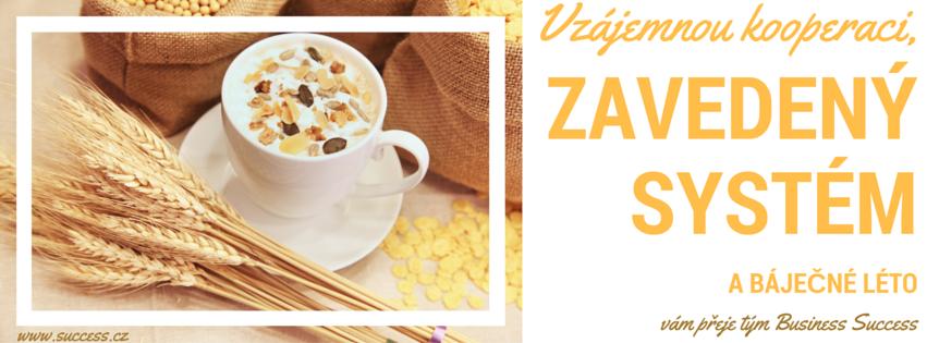 kooperace_zavedený systém_organizace_rastislav zachar_business success