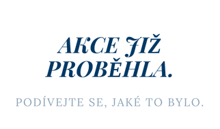 akce-jiz-probehla_business-success