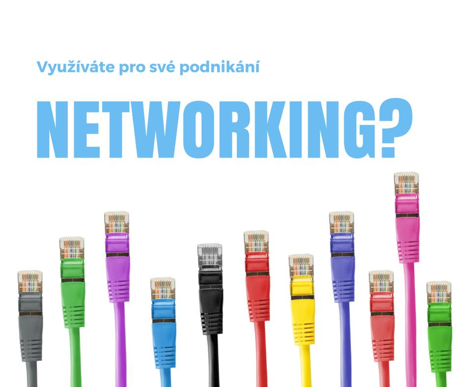Využíváte pro své podnikání networking?