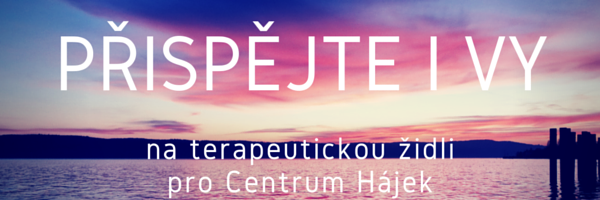 PŘISPĚJTE I VY_business success_podporujeme_centrum hájek
